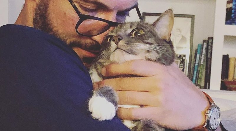 Tom Ellis had been caught whispering to his cat [VIDEO]